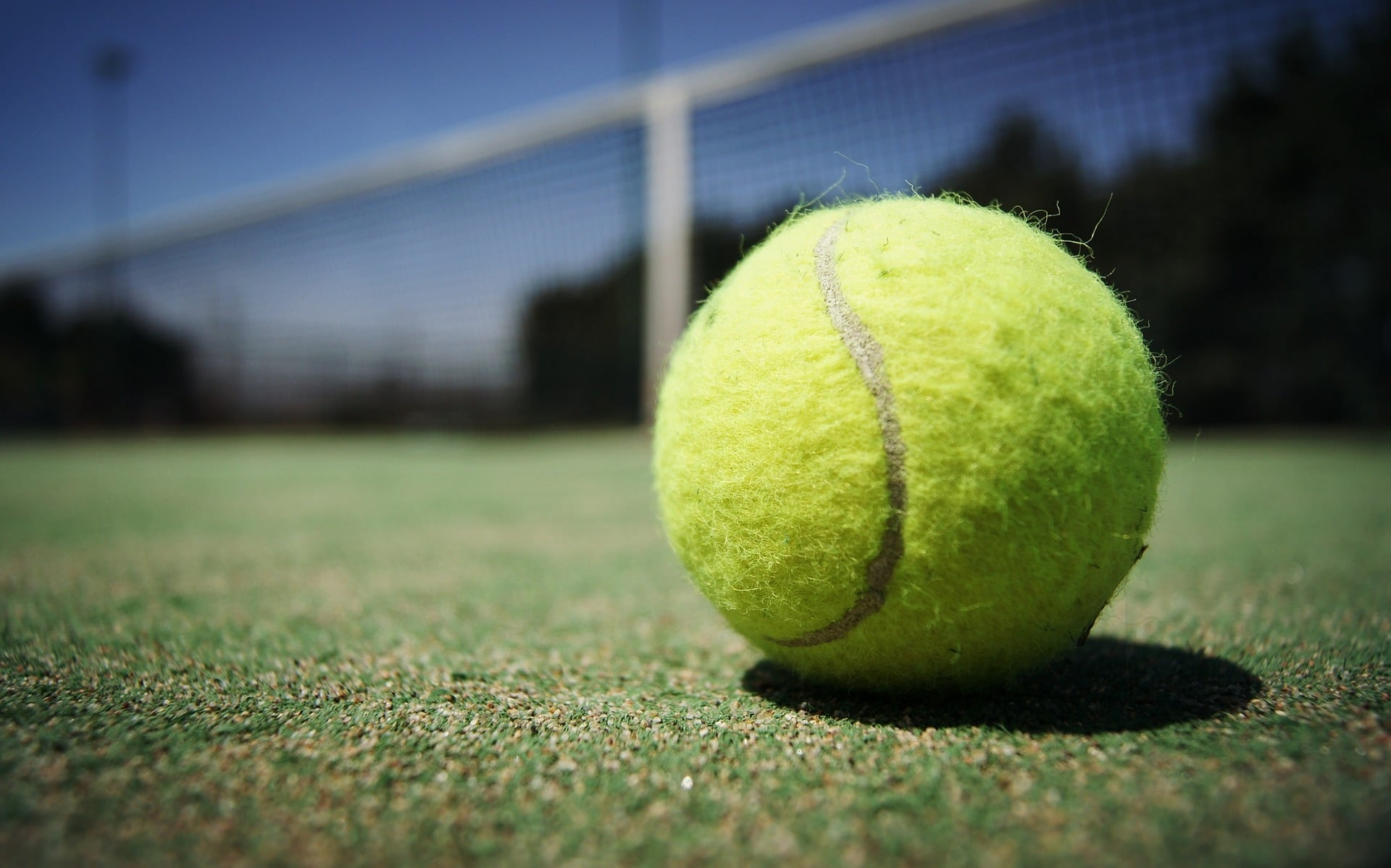 wimbledon-final-carer-support-south-lakes-fundrasier